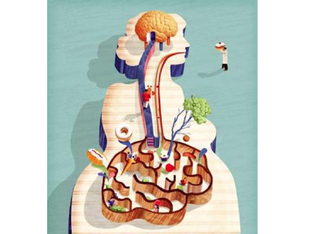 Anche lo stomaco ha un cervello!