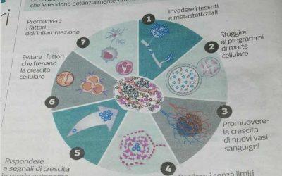 L'immunoterapia, nuova frontiera delle cure contro il cancro